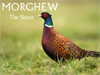 The Morghew Shoot
