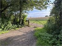 Countryside around Tenterden