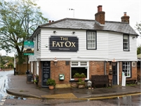 The Fat Ox