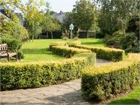 Tenterden Millennium Garden