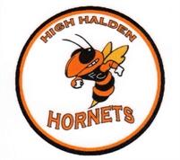 High Halden Hornets FC
