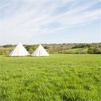 Fern & Field ~ Wedding Venue