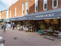 Woodcocks