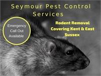 Seymour Pest Control