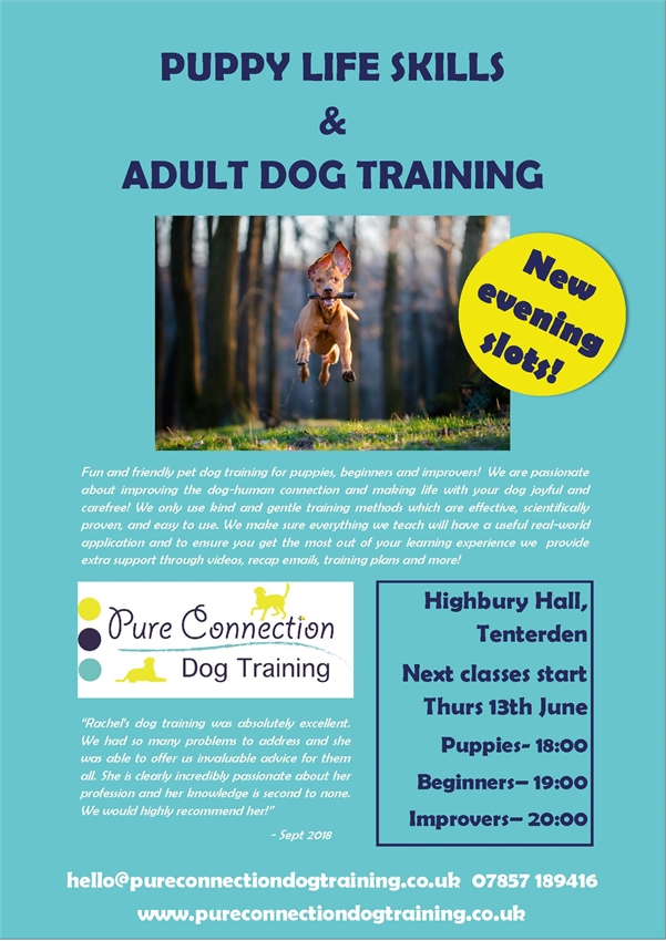 Dog Training Tenterden