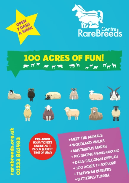 Summer Fun at the Rare Breeds Centre