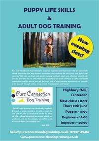 Puppy Life Skills & Adult Dog Training | Tenterden Classes