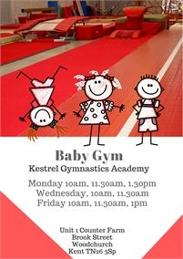 Parent & Toddler classes at Kestrel Gymnastics Academy