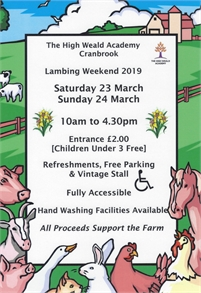 Lambing Weekend | The High Weald Academy