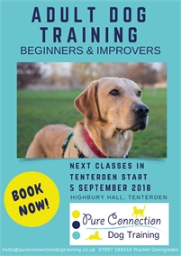 Adult Dog Training Beginners | Tenterden