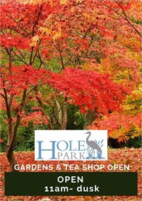 Autumn Colours   Hole Park Gardens