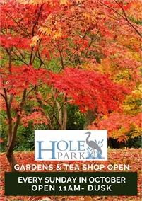 Autumn Sundays at Hole Park Gardens