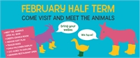 Half Term Fun | The Rare Breeds Centre