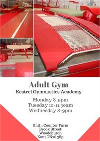 Adult gymnastics with Kestrel Gymnastics Academy