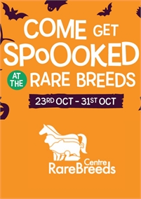 Halloween Fear and Fun at the Rare Breeds Centre