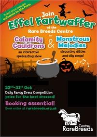 Halloween | Rare Breeds Centre
