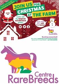 A Truly Magical Christmas   Rare Breeds Centre