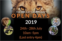 The Big Cat Sanctuary Open Days