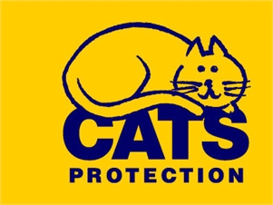 Cats Protection Shop Tenterden Jo Davis