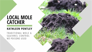 Mole and Squirrel Control Kathleen Pentley