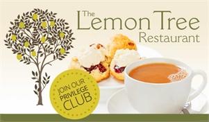 The Lemon Tree Cafe & Restaurant Nick Apsey-Brown
