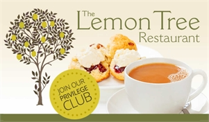 The Lemon Tree Cafe & Restaurant Nick Apsey-Brown