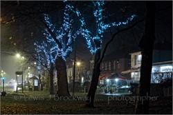 Photos Tenterden Christmas Lights 2016