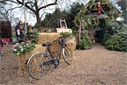 Photos The Woolpack Winter Garden