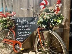 Photos Tenterden Christmas Market 2019