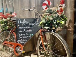 Photos Tenterden Christmas Market 2019
